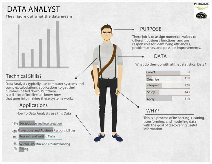 Data analyst job description  In so many words  | Healthcare
